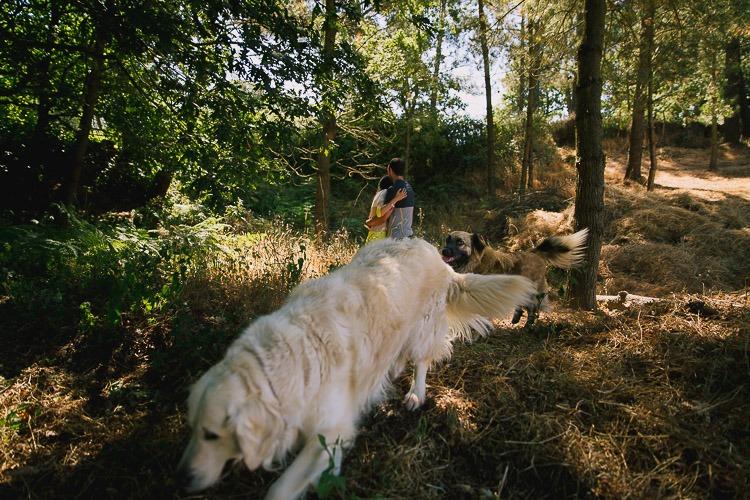 fotografos boda lugo, cedeira, silleda