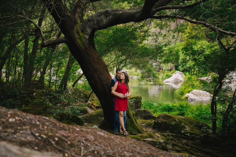 apoyados en un bonito árbol al lado del río